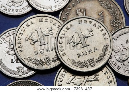 Coins of Croatia. Croatian national coat of arms and marten (Martes martes) depicted in the Croatian one kuna coin. poster