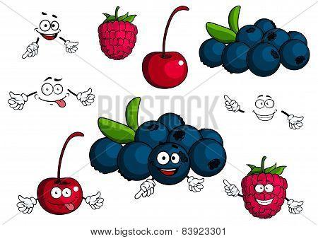 Cartoon cherry, raspberry, blueberries characters