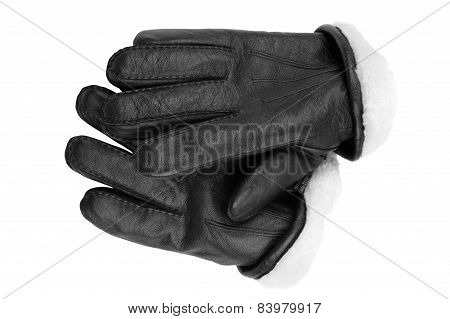 Leather Gloves On White