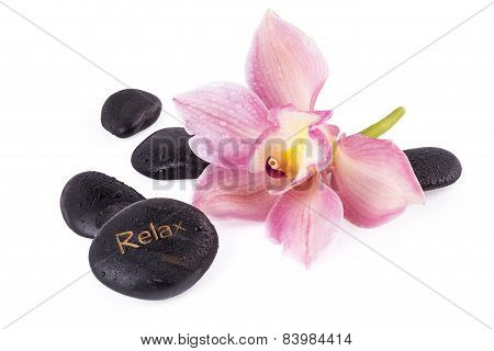 spa relax concept