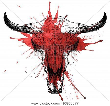 Bull / auroch bloody skull with horns on white background.
