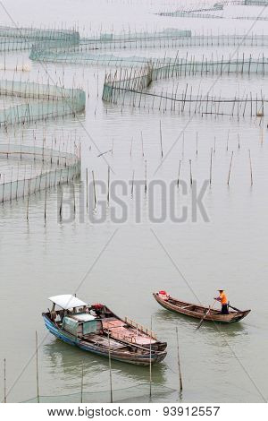XIAPU, CHINA - JUNE 4, 2015: A farm worker rows out to inspect the nets of a large crab farm in the sea. Aquaculture is an important economy in the eastern coast seaside towns in Xiapu County.