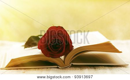 Book With Rose