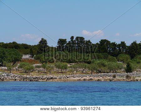 Croatian Saint Petar island