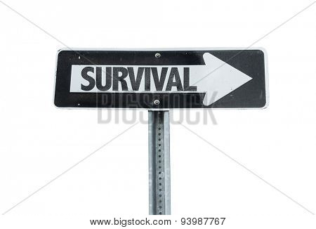 Survival direction sign isolated on white