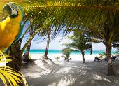Art Vacation on Caribbean Beach Paradise; art summer beach background; abstract travel background poster