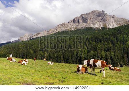Alpine landscape in the Dolomites, Italy, Europe