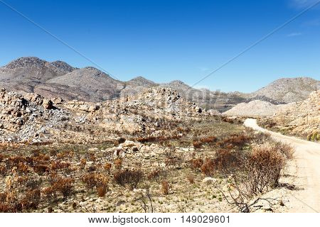 The Road Of The Scorched Earth On The Swartberg Pass