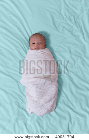 Overhead view of infant baby boy swaddled in white blanket with eyes open while lying on blue sheets. Vertical layout