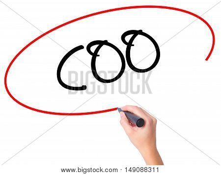 Women Hand Writing Coo (chief Operating Officer) With Black Marker On Visual Screen