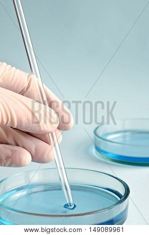 Chemical Research In Petri Dishes. Chemistry. Microbiology.