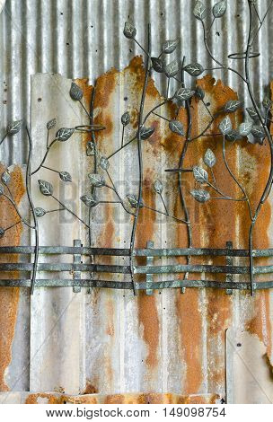 curved steel leaf on old galvanized iron sheet wall