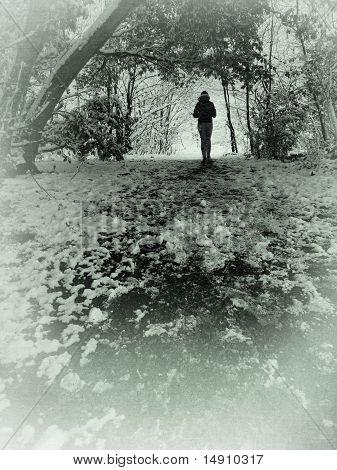 Figure Walking Through Woodland, London