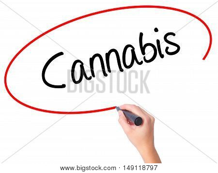 Women Hand Writing Cannabis With Black Marker On Visual Screen