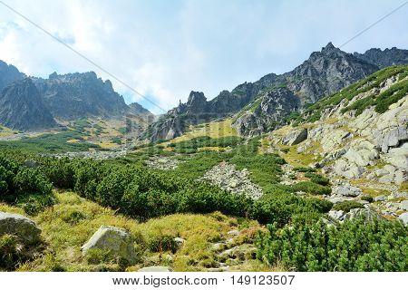 High Tatras Nature