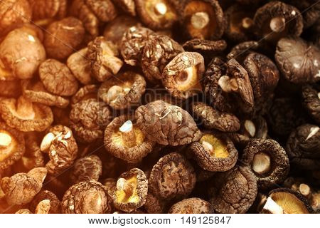 a pile of dried shiitake mushroom .