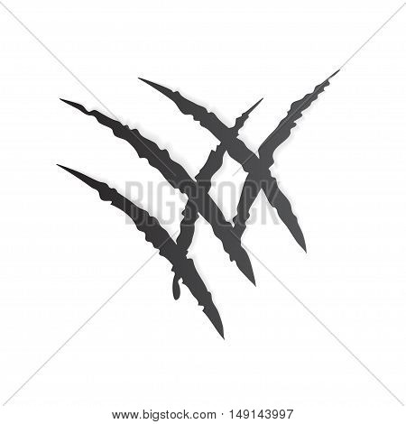 Claw Scratching Wild Animal on White Background. Vector illustration