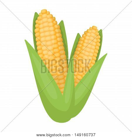 Sweet corn icon in cartoon style isolated on white background. Canadian Thanksgiving Day symbol vector illustration.