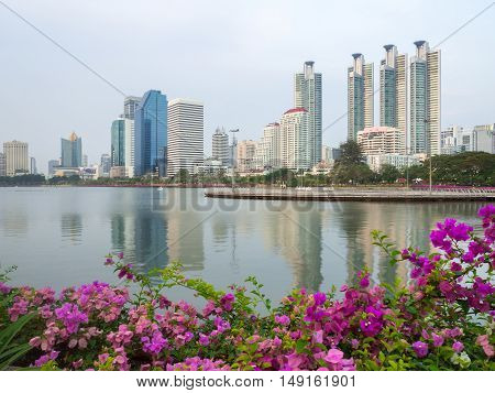 City scape at day and the Pink flower is foreground