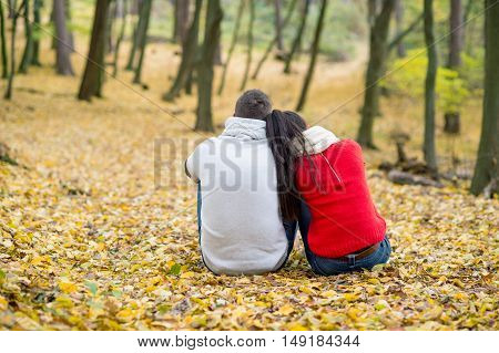 Beautiful young couple in autumn park sitting on the ground covered with yellow leaves, back view