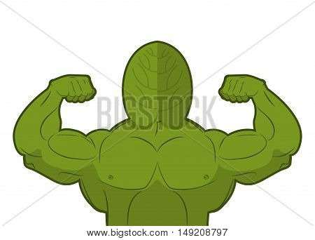 Spinach Strong. Useful Herbs With Big Muscles. Green Leaves Lettuce Powerful Arms. Sports, Dietetic