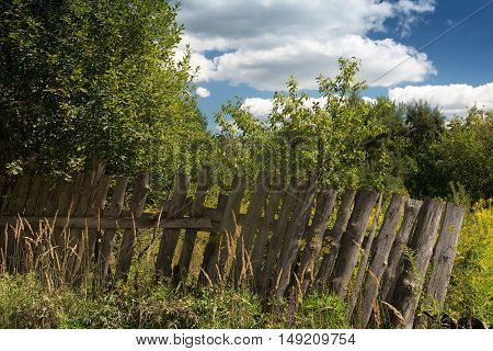 neglected garden and a rickety fence on a summer afternoon