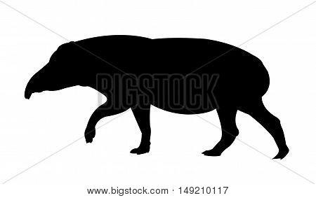 Tapir Silhouette on White Background. Isolated vector illustration animal theme.