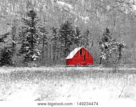 Winter barn scene at Gatineau Park black, white and red