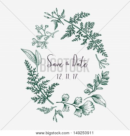 Wreath with herbs and leaves isolated on white background. Botanical illustration. Boxwood seeded eucalyptus fern maidenhair. Save the date. Design elements. Vector. Engraving style.