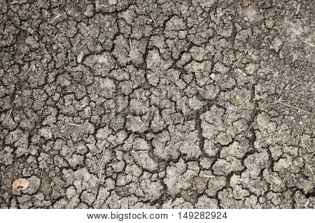 cracked or dried ground/earth texture background. aridity desolation and dryness concept.