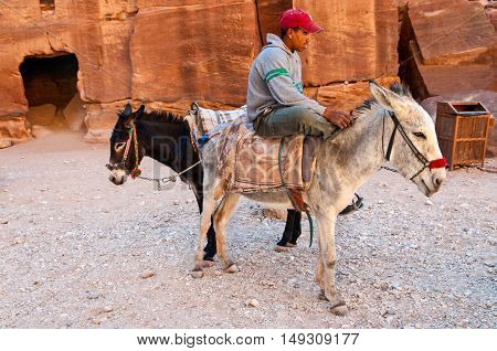 Petra Jordan - November 20 2010: A local guide is waiting with her donkeys for visitors to take through the ancient city of Petra in Jordan. Local bedouins are guiding tourists through the ancient city of Petra on the back of ass. Petra is one of UNESCO h