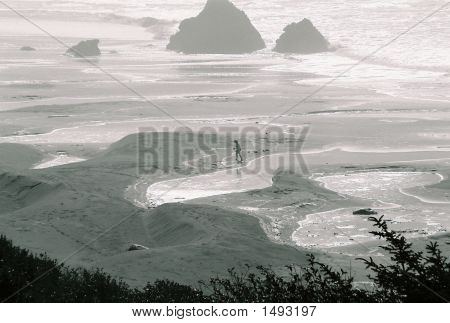 Lonelyness Of Coast