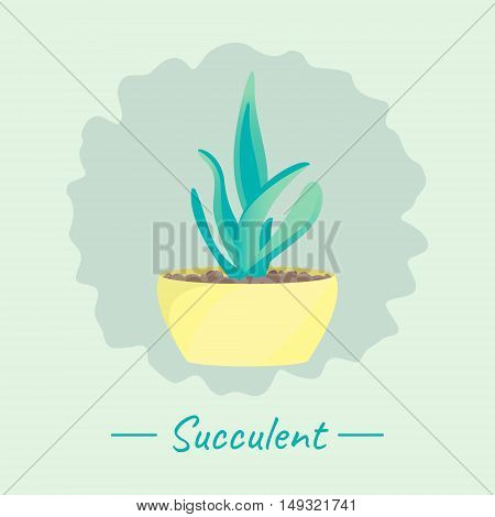 Succulent plant in a flower pot on green background. Home interior floral design elements. Green house plants flowers and nature concept. Tropical exotic botany collection. Vector illustration.