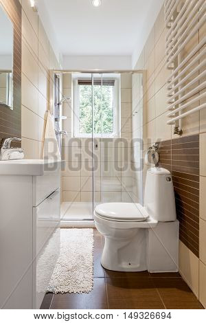 Small And Functional Bathroom Interior