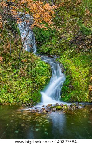 Wild waterfall flowing free in autumnal landscape