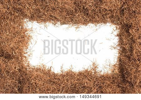 Dry Corn Silk Herb. Stigmata Maydis Frame isolated in white background