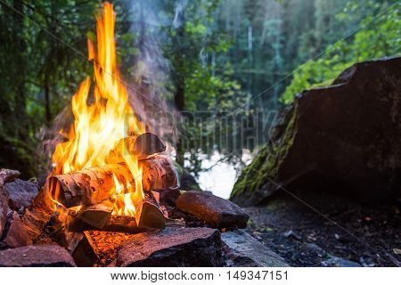 Closeup of burning campfire in forest landscape