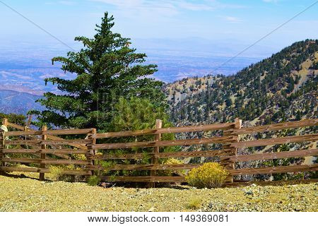 Rustic wooden fence surrounded by trees and flowers overlooking the Mojave Desert taken in Mt Baldy, CA