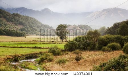 Landscape of Abruzzo Italy. in the foreground a stream grazing animals and the background the mountains on a cloudy day.