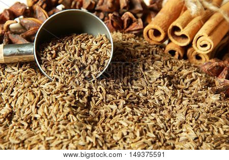 caraway seeds or kemmel (German name) with Cinnamon  helps to expel the stomach and intestines