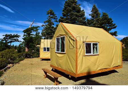 Tent Cabins for outdoor enthusiasts wanting to enjoy a comfortable camping experience taken in a forest at Mt Baldy, CA