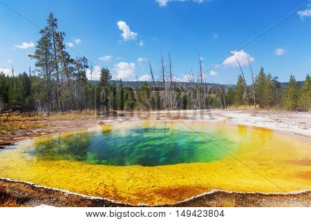 Fantastic colors of the Morning Glory Pool in Yellowstone National Park of Wyoming,Upper Geyser Basin.  Autumn season. USA.