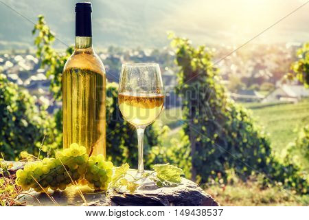 Bottle and full glass of white wine over vineyard background. Wine tasting and gastronomy concept poster