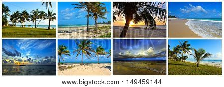 Collage Coast Diani
