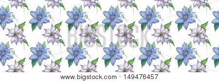 Wildflower clematis flower pattern in a watercolor style isolated. Full name of the plant: clematis, wisteria. Aquarelle flower could be used for background, texture, pattern, frame or border.