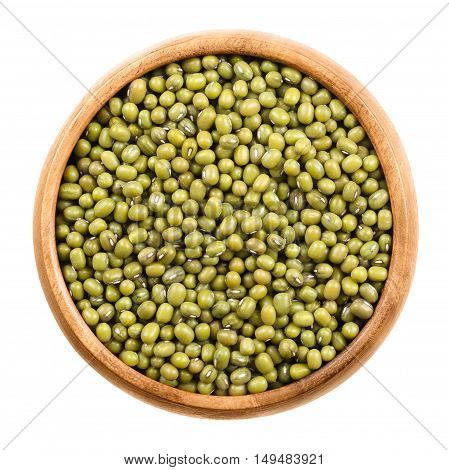Mung beans in a wooden bowl on white background. Dried beans of Vigna radiata, also moong bean, green gram or mung, a legume, used in cuisine as ingrdient and to sprout. Isolated macro food photo.