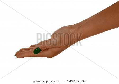 Palm up showing anything middle-aged female's skin green manicure. Isolated on white background.