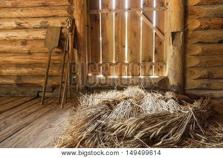 Hay Sheaves In Old Wooden Interior