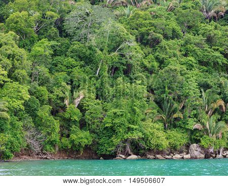 Rainforest hill near ocean at Manuel Antonio Costa Rica