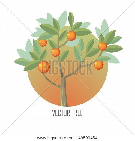 Orange tree with green leaves and ripe oranges. Vector tree round icon. Tree forest, leaf tree isolated, tree branch nature green, plant eco branch tree, organic natural wood illustration.